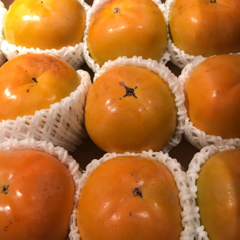 今年もうきはの赤司さんから立派な柿が届きました。大事に使わせていただきます。なんにしようかな〜♫今日10/20も17時より営業してます。#イルフェソワフ #ワイン#日本酒 #薬院#警固#大秋柿