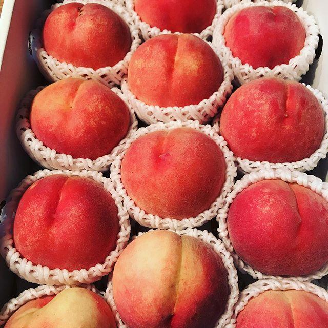 ナチュラルピクニックでお世話になったうきはの赤司農園さんから美味しい桃が届きました!少し追熟してからいただきます。#イルフェソワフ #ワイン#日本酒 #薬院#警固