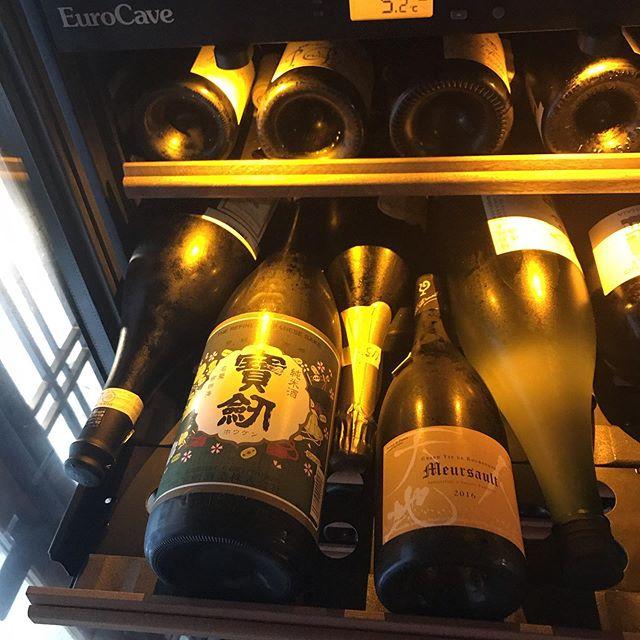 日本酒もセラーで保存しています。宝剣のレトロラベル@広島は最近のお気に入り。エチケットからの印象をいい意味で裏切られるフルーティさが魅力的です。#イルフェソワフ #ワイン#日本酒 #薬院#警固