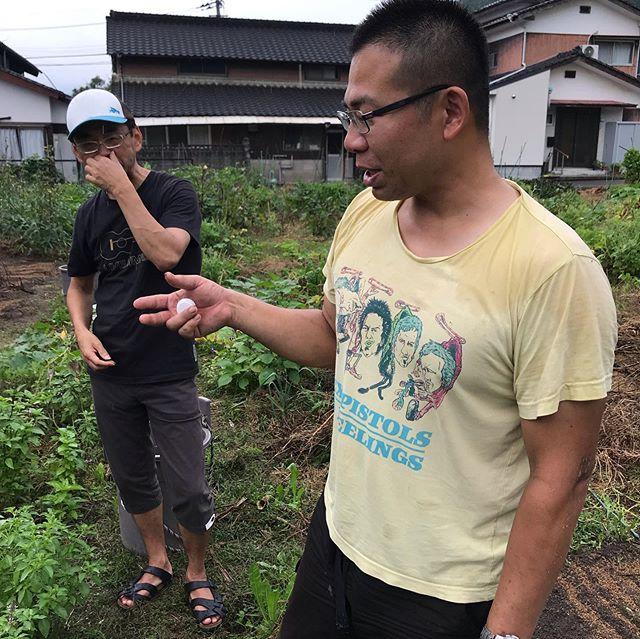 佐賀有田の川久保農園を訪問。いやー刺激的な畑でした!明日からお店のサラダでお出ししますねー#イルフェソワフ #ワイン#日本酒 #薬院#警固#川久保農園